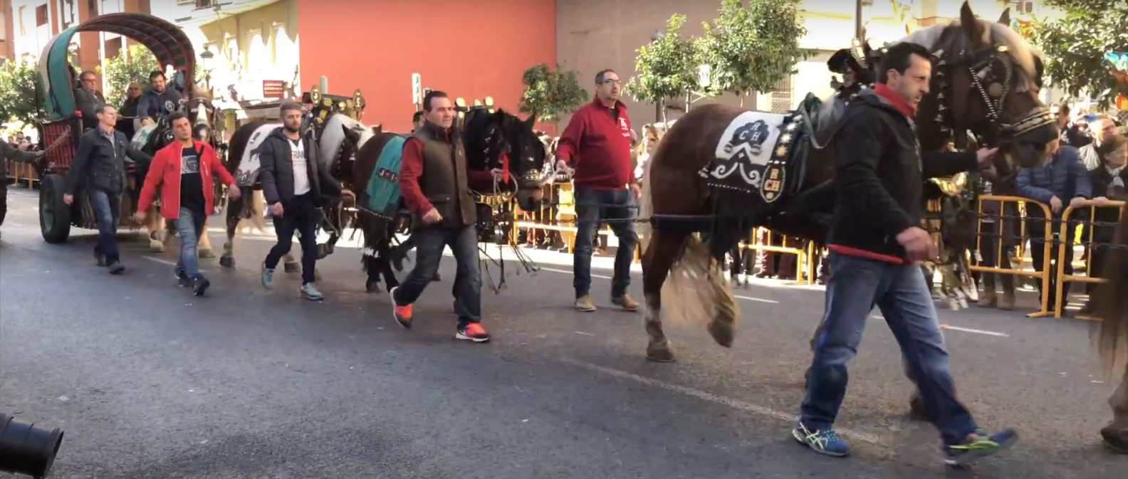 Hogueras y bendición de animales para celebrar a San Antonio