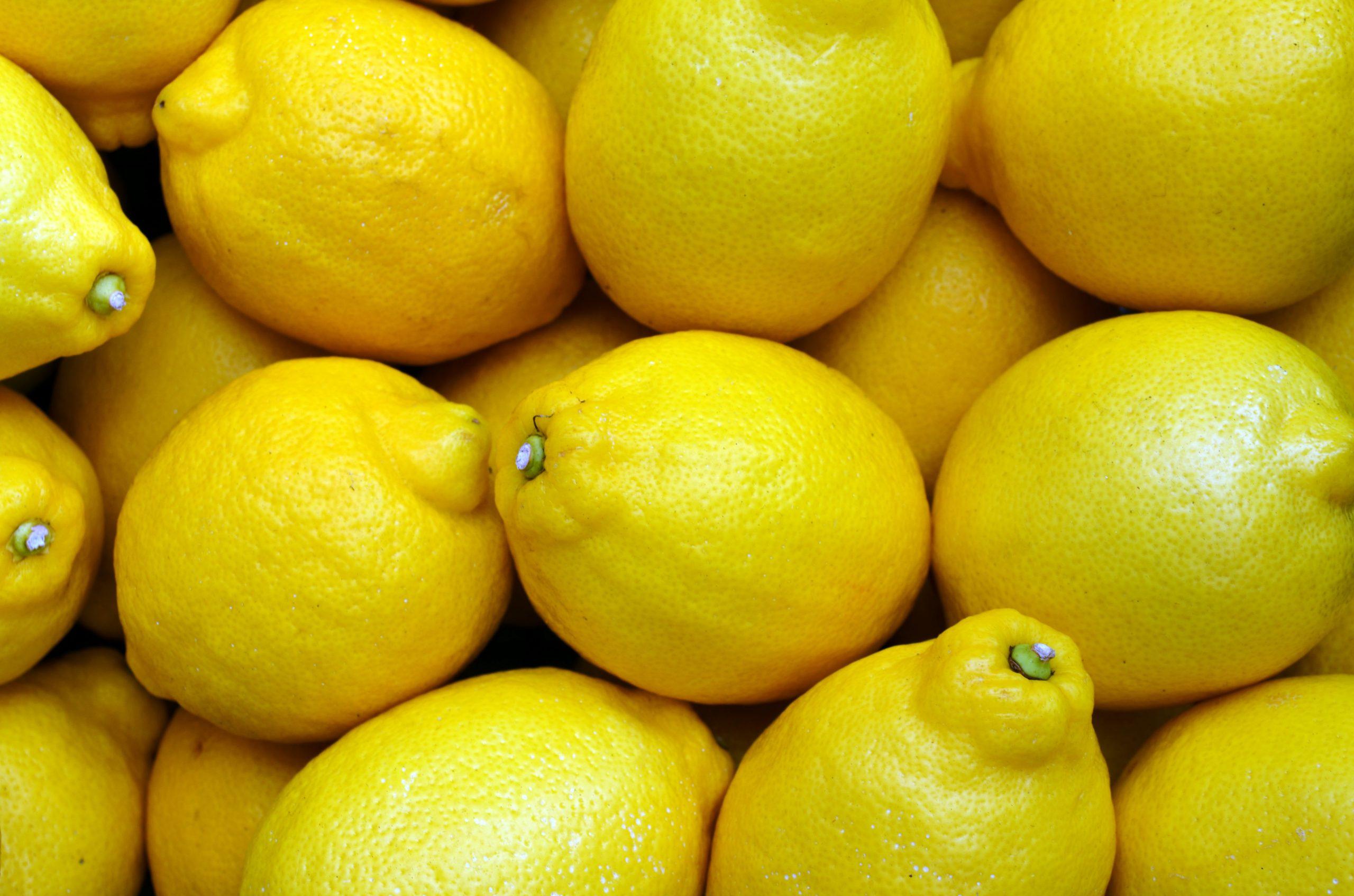 Los limones Verna llegan a los supermercados Mercadona
